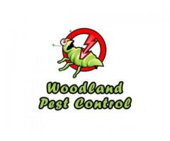 CDO Pest Control by Woodland Pest Control
